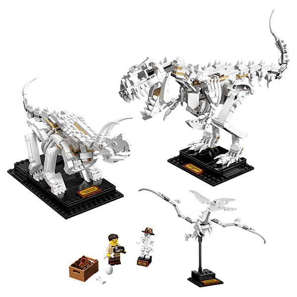 LEGO® Ideas 21320 Dinosaur Fossils