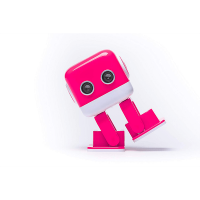 Litehawk DJ Bot Raspberry